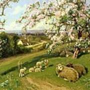 Spring - One Of A Set Of The Four Seasons  Art Print