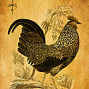 Thanksgiving Rooster Art Print