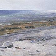The Beach Mols Art Print