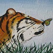 '' Tiger Colors'' Art Print