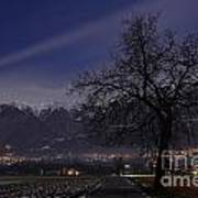 Tree And Snow-capped Mountain Art Print