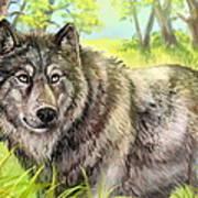 Wolf Summer Art Print