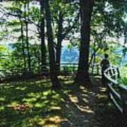 012a Niagara Gorge Trail Series  Art Print