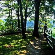 012b Niagara Gorge Trail Series  Art Print