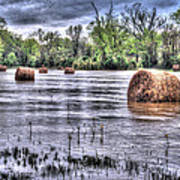 0804-3586 Flooded Hay Print by Randy Forrester