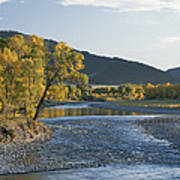 A Scenic View Of The Yellowstone River Art Print