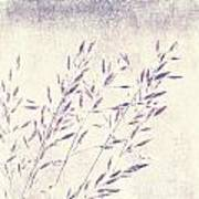 Abstract Gras Art Print