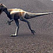 Allosaurus Dinosaur Art Print