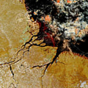 Amazon River In Northern Brazil Art Print