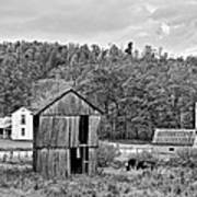 Autumn Farm Monochrome Art Print by Steve Harrington