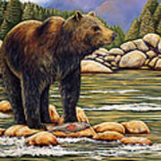 Bear Catch Of The Day Art Print