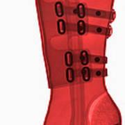 Boot, X-ray Art Print