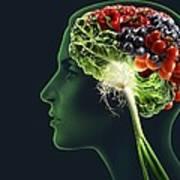Brain Food, Conceptual Image Art Print