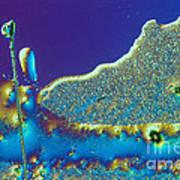 Buckyball Crystal Art Print