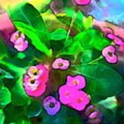 Color 115 Art Print