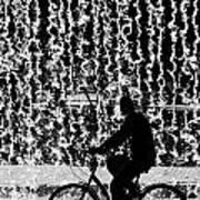 Cycling Silhouette Art Print by Carlos Caetano