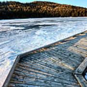 Cypress Hills Alberta Art Print