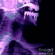 Dental Work Art Print