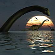 Diplodocus Dinosaurs Bathe In A Large Art Print