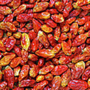 Dried Chili Peppers Print by Carlos Caetano