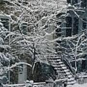 Drolet Street In Winter, Montreal Art Print