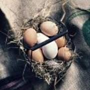 Eggs Art Print by Joana Kruse
