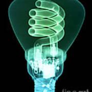 Energy Efficient Light Bulb Print by Ted Kinsman