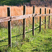 Fence Perspective Art Print
