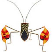 Flagfooted Bug Barbilla Np Costa Rica Art Print