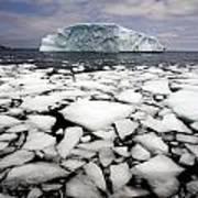 Floating Ice Shattered From Iceberg Art Print