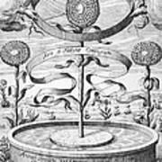 Flower Clock, 1643 Art Print