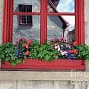 Flower Pots ...... 13 Art Print