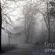Fog In Forest Art Print