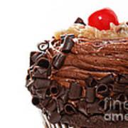 German Chocolate Cupcake 2 Art Print
