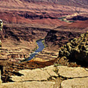 Grand Canyon Colorado River Art Print