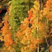 Hang Gliding The Autumn Colors Art Print