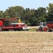 Harvest Time 1 Art Print