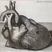 Heart Of King George II, 18th Century Art Print