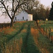 Historic Stevens Creek Farm Art Print by Joel Sartore