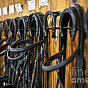 Horse Bridles Hanging In Stable Art Print by Elena Elisseeva