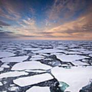 Ice Floes At Sunset Near Mertz Glacier Art Print