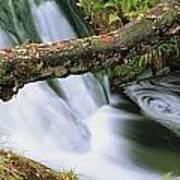 Ireland Waterfall Art Print