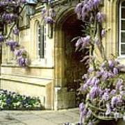 Jesus College Art Print