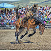 Jordan Valley Arena Action 2012 Art Print