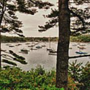 Northeast Harbor Art Print