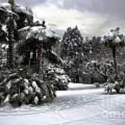 Palm Trees With Snow Art Print