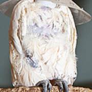 Parrot White Art Print