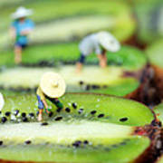 Planting Rice On Kiwifruit Art Print