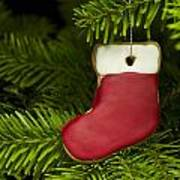 Present Sock Shape Short Bread Cookie In Christmas Tree Art Print
