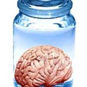 Preserved Brain, Artwork Art Print